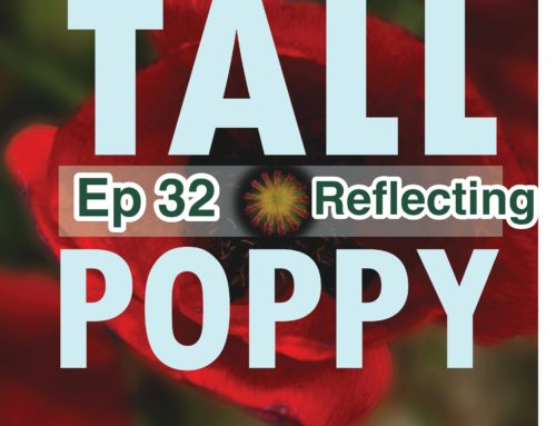TP 32: Reflecting on Tall Poppy